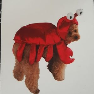 Dog Lobster Crab Costume Halloween Size Small Red